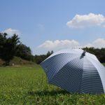 原っぱにおかれた日傘