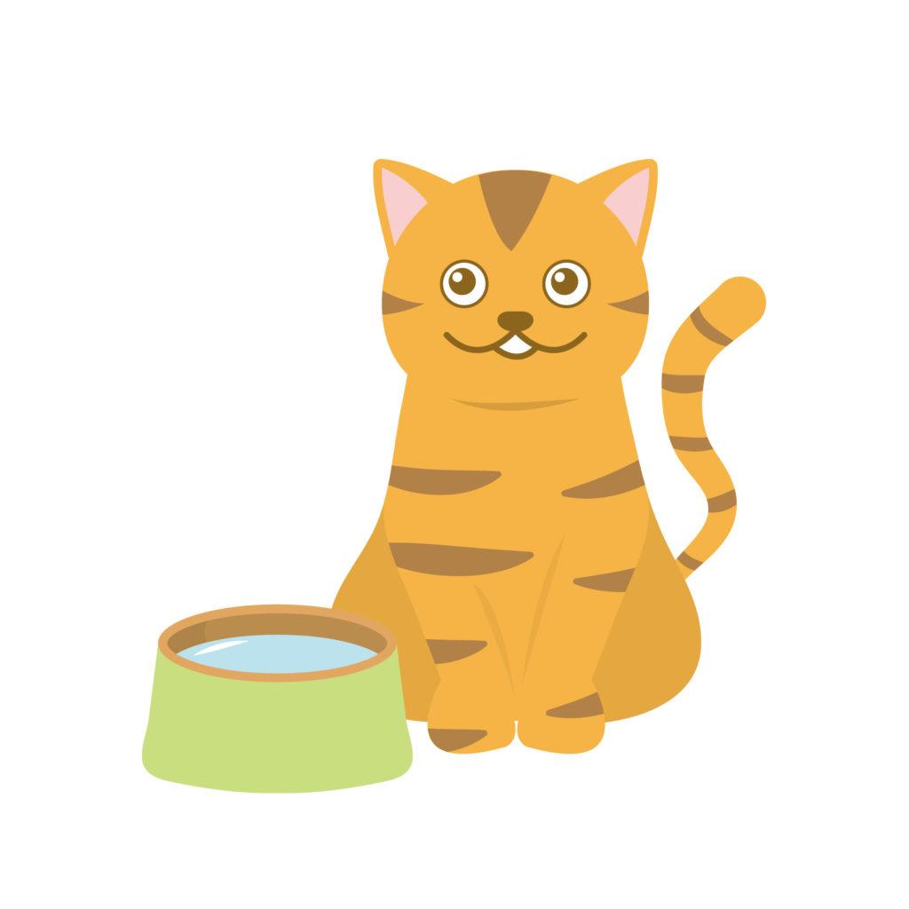 猫と飲み水のイラスト