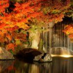 紅葉狩りとは?紅葉の条件と名所の見頃はいつから?京都の観光なら?