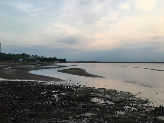 真玉海岸の干潟