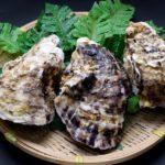 殻付き牡蠣の焼き方!自宅のグリルやレンジでの調理法と保存方法。