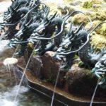 九頭龍神社へのアクセス、月次祭への行き方は?駐車場や参拝方法と箱根神社への両社参り