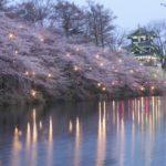 高田城の桜はいつが見頃?服装とおすすめ撮影スポット、駐車場やバスの混雑は?