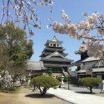 中津城へのアクセスと料金、駐車場は?桜花見の様子とおすすめの見どころ!