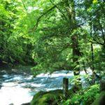 菊池渓谷へのアクセスや駐車場。子供は泳げる?川遊びやBBQができるのは?