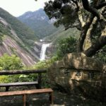 屋久島千尋の滝の行き方と駐車場は?バスでのアクセス、周辺観光は?