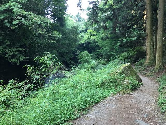 東椎屋の滝への道