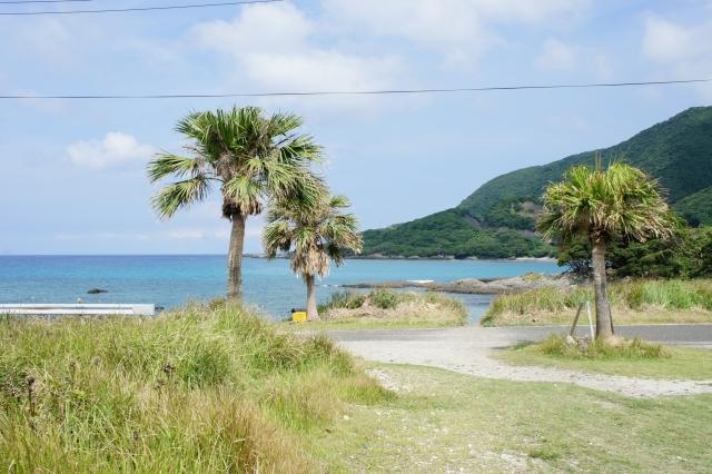 屋久島のダイビングスポット