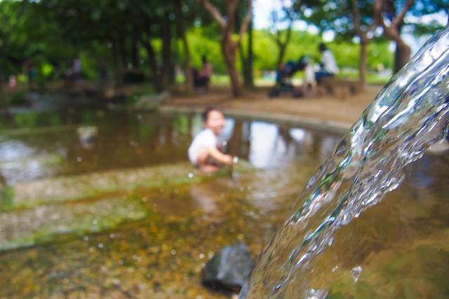 水遊びをする子供