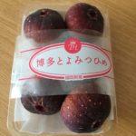 とよみつひめの食べ方と味、保存方法は?福岡でいちじく狩りができるのは?
