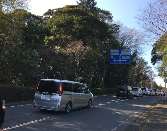 霧島神宮前の道路