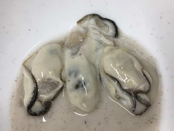 片栗粉で汚れをおとした牡蠣