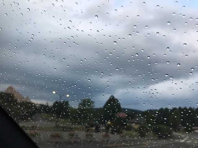 アフリカンサファリについたら雨