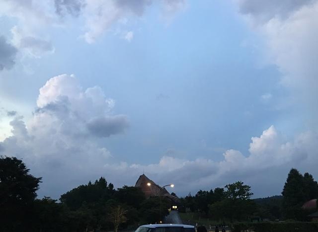 雨があがったアフリカンサファリ