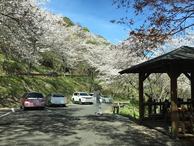 花立公園の駐車場と休憩所