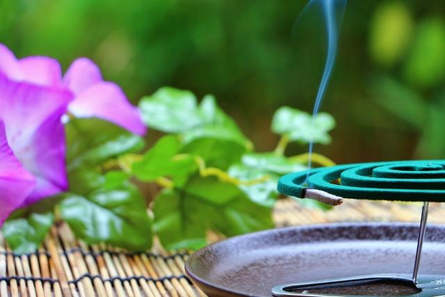 夏の蚊取り線香