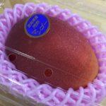 マンゴーの食べ方で無駄のない切り方はコレ。花咲カットと比べてみた!